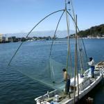 この日は快晴。「獲れますか~?」とたっける(大声で呼びかける)と、「今日はぼちぼちじゃねぇ~」と漁師さん。